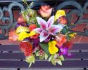 Gorgeous tropical bridal bouquet, orange pin cushion protea, stargazer lilies, yellow calla lilies, lime green dendrobium orchids, bright orange roses.