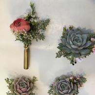Succulent Corsages and Boutonnieres
