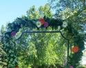 Arbor decorated with fresh mixed greenery and gerber daisies.