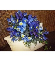 Cascading bridal bouquet with blue iris and dark blue delphinium.]