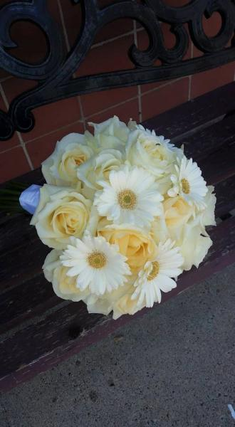 Pale yellow roses, ivory minature gerbera daisies accented with white satin ribbon.